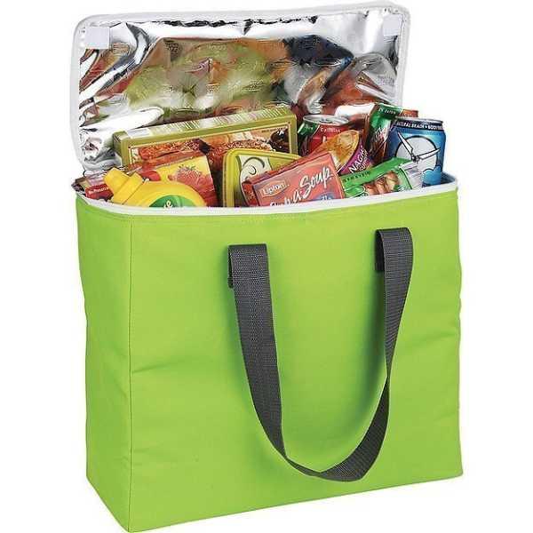 Arctic Zone 30 Can Foldable Freezer Tote AZ1008BL Lime Green