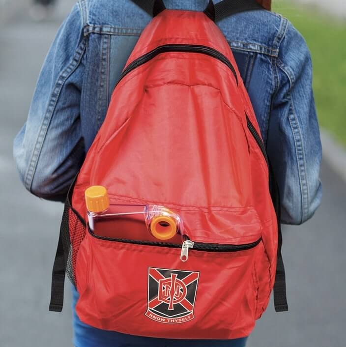 Backpackblog1