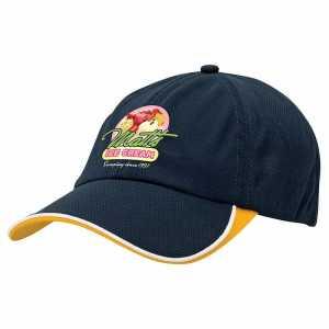 Cool Dry Cap 4167 Navy Yellow
